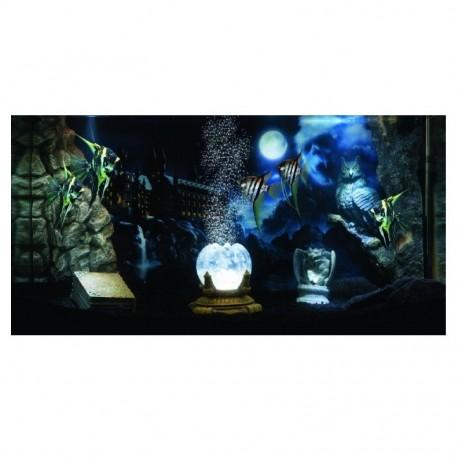 Paisaje acuario Magic World