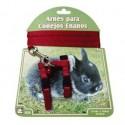 Arnés conejos enanos