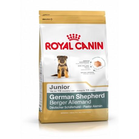 Pastor Alemán junior Royal Canin