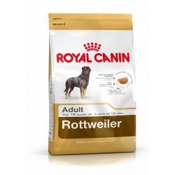 Rottweiler Royal Canin