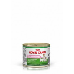 Starter Mousse Royal Canin