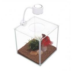 Bettera Cubus cristal 3.4 litros