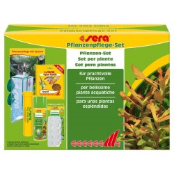 Set CO2 para plantas