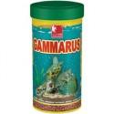 Alimento Gammarus para tortugas