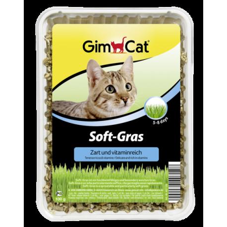Hierba tierna Soft Gras