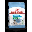 Mini Starter Royal Canin