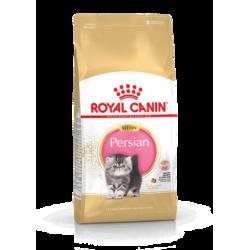 Kitten Persian 32 Royal Canin