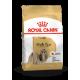 Shih Tzu Royal Canin