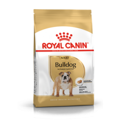 Bulldog Royal Canin