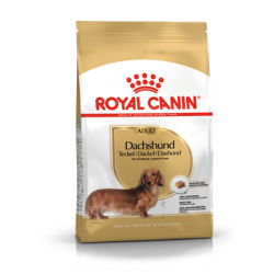 Dachshund Royal Canin