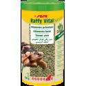 Raffy Vital tortugas tierra