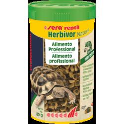Reptil Profesional Herbivor