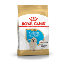 Golden Retriever Junior Royal Canin