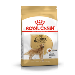 Golden Retriever Royal Canin