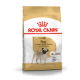 Pug/Carlino Royal Canin