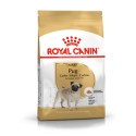 Pug/Carlino Royal Canin