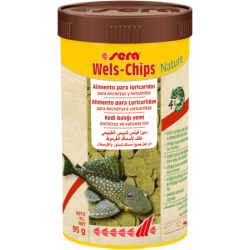 Wels-Chips
