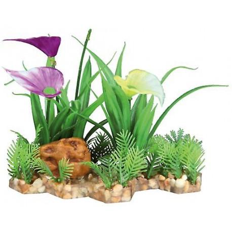 Base con plantas decoración acuario