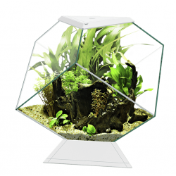 Mini Acuario Nexus Pure 14C