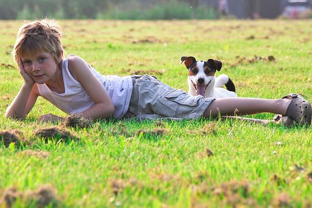 El contacto directo entre mascotas y humanos