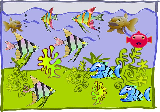 Acuarios, un ecosistema completo en tu prpia casa