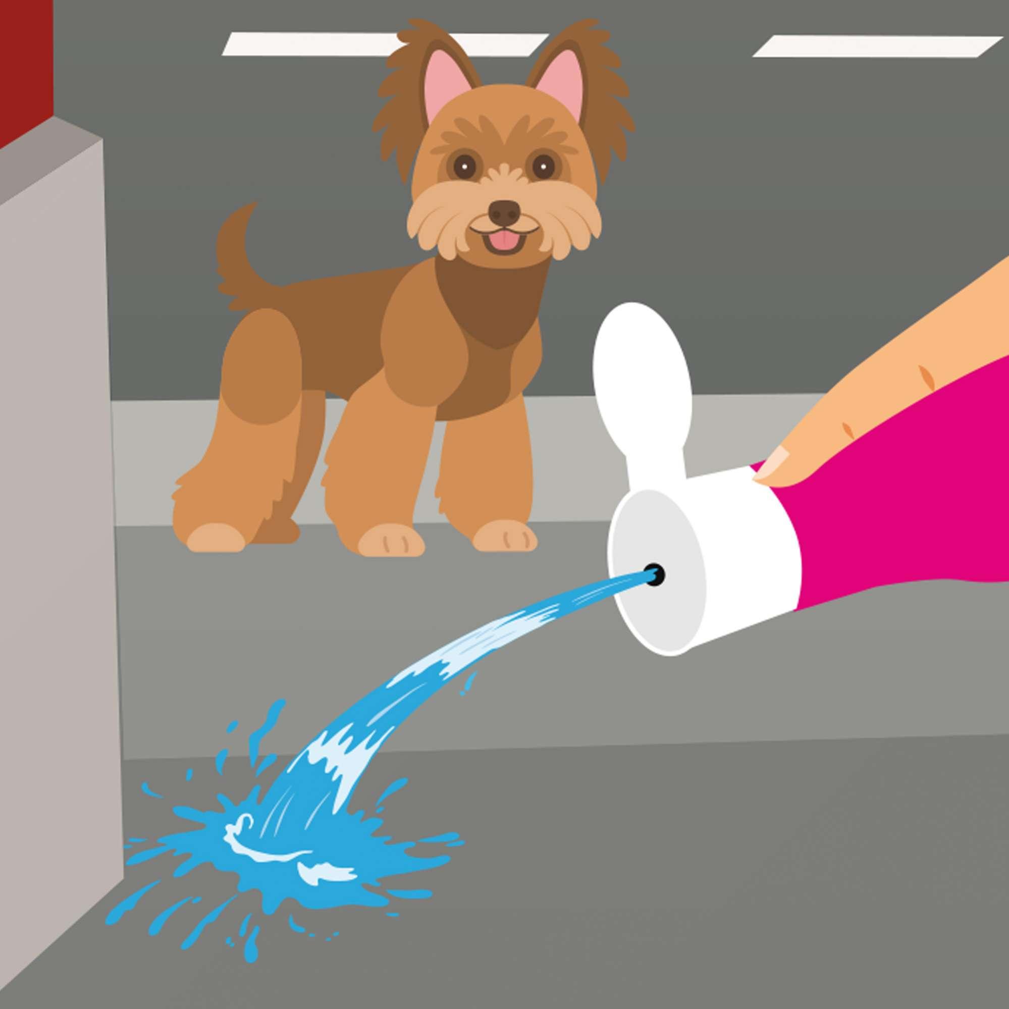 Dispensador para diluir la orina en tus paseos con tu perro